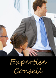 Expertise Conseil