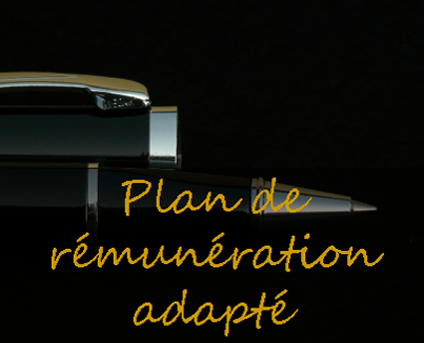 plan de remuneration adapte